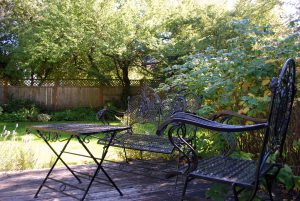 Fenced backyard and deck